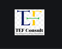 9 Job Opportunities at TEF Consult Tanzania Limited - Various Posts