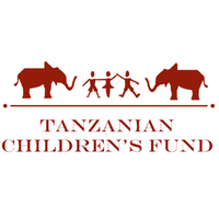 Job Opportunity at Tanzanian Children's Fund, Education Director