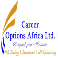Job Opportunity at Career Options Africa, Supply Chain Advisor.