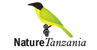 Job Opportunity at Nature Tanzania, Finance Officer