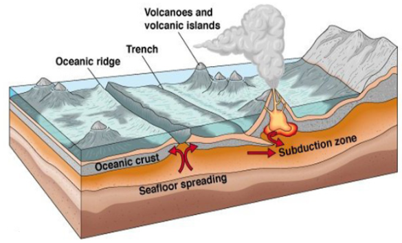 GEOGRAPHY NOTES-form Five-THEORY OF PLATE TECTONIC